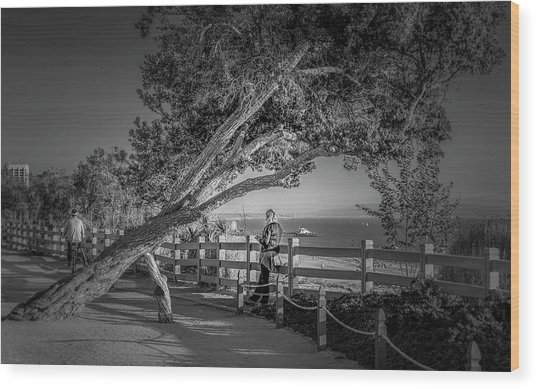 A Walk In The Park B And W Wood Print