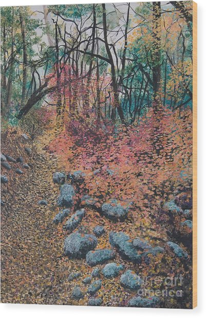 A Walk In The Woods Wood Print by Lucinda  Hansen