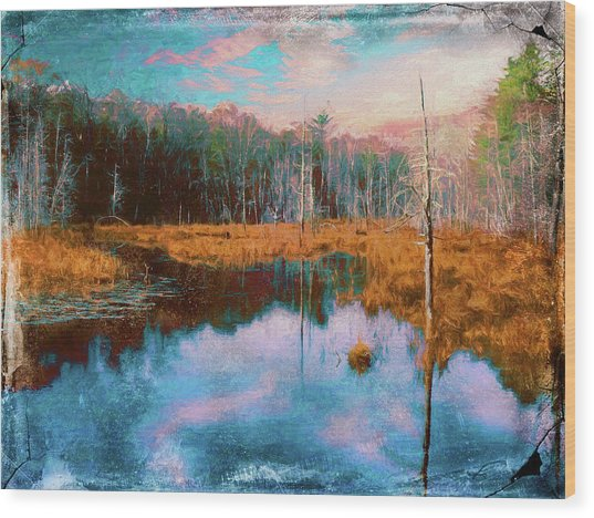 A Wilderness Marsh Wood Print