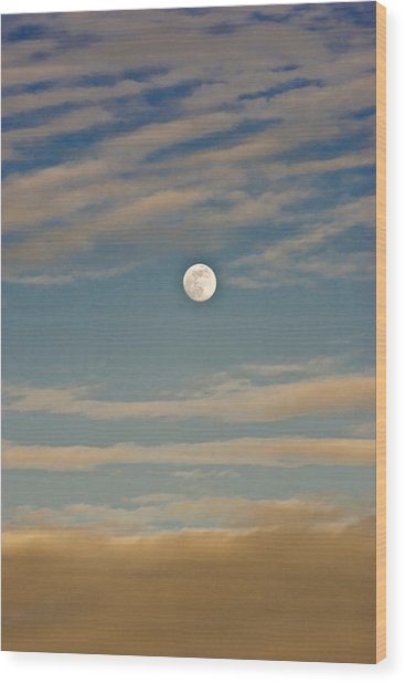 A Winter Moon Wood Print