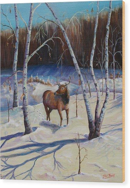 A Winter Morning Wood Print