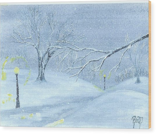 A Winter Walk... Wood Print by Robert Meszaros
