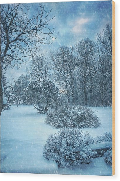 A Winters Tale Wood Print