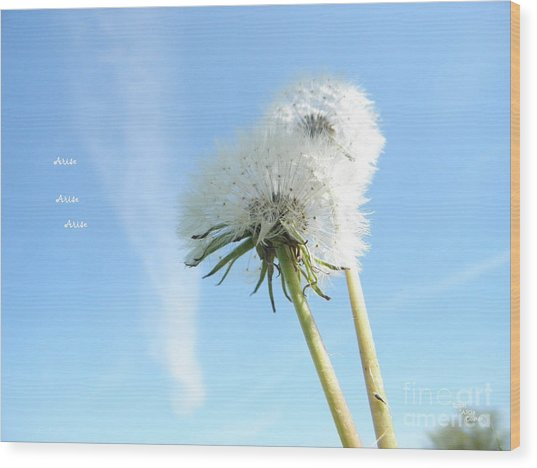 A Wish Blown Off To The Maker Wood Print