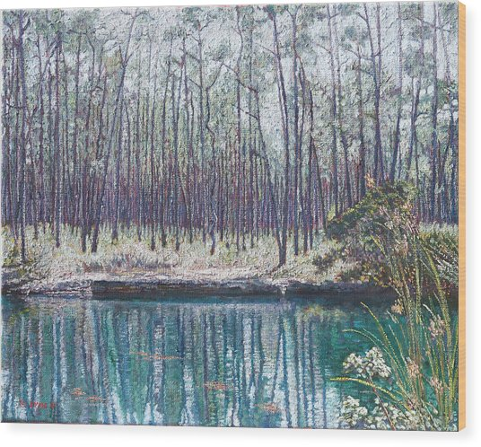 Abaco Blue Hole Wood Print