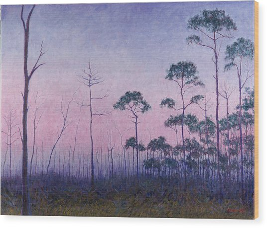 Abaco Pines At Dusk Wood Print