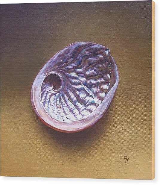 Abalone Shell -  A Wood Print