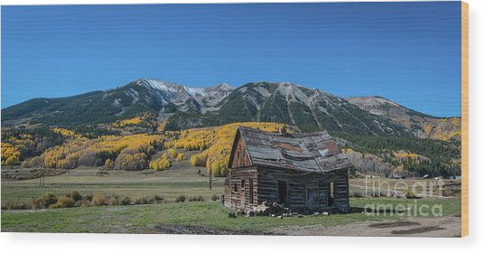 Abandoned Cabin Near Crested Butte Wood Print