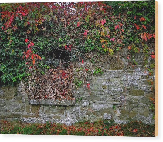 Wood Print featuring the photograph Abandoned Irish Cottage In Autumn by James Truett
