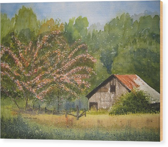 Abandoned Mimosas Wood Print