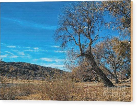 Forgotten Park Wood Print