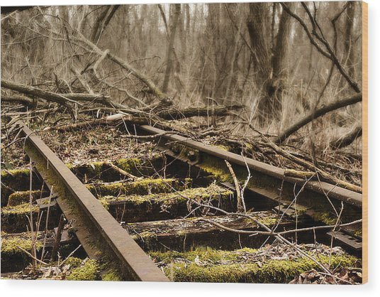 Wood Print featuring the photograph Abandoned Railroad 1 by Scott Hovind