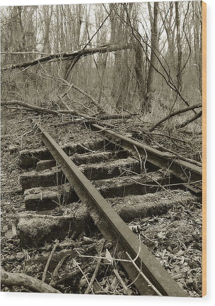 Wood Print featuring the photograph Abandoned Railroad 2 by Scott Hovind
