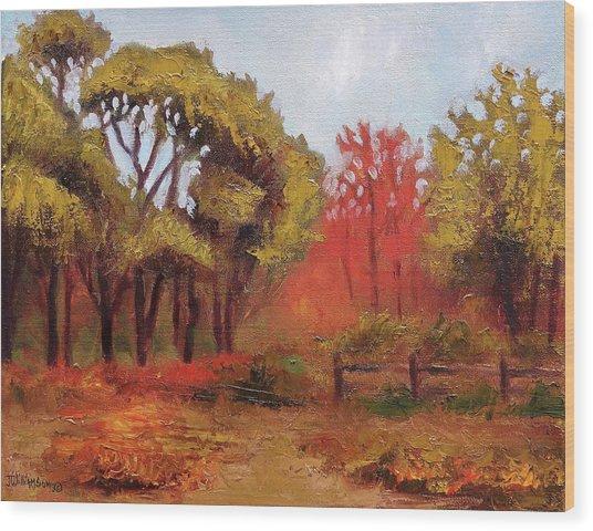 Abeel Fields Wood Print