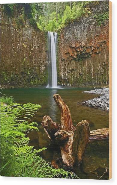 Abiqua Falls Oregon Wood Print