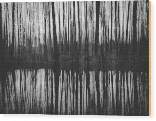 Above And Below Wood Print