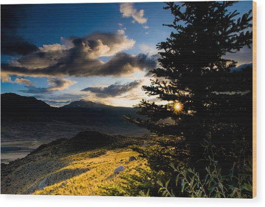 Above Gardiner Montana Wood Print by Patrick  Flynn