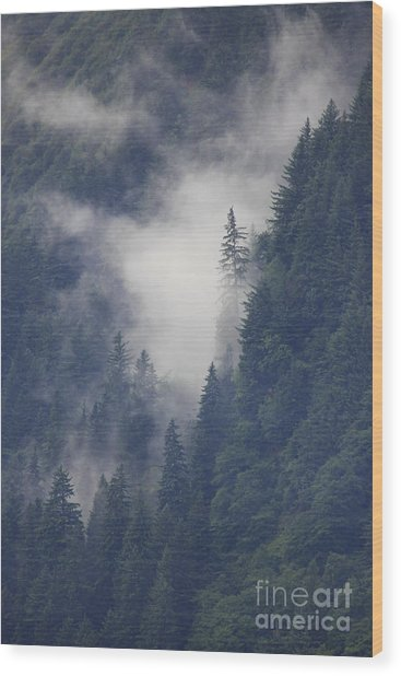 Above Juneau Wood Print by Stan and Anne Foster