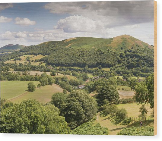 Above Little Stretton Wood Print by Richard Greswell