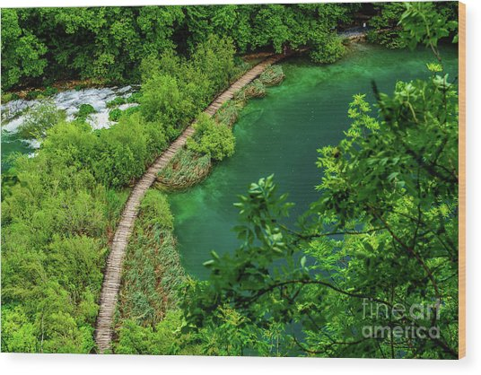 Above The Paths At Plitvice Lakes National Park, Croatia Wood Print