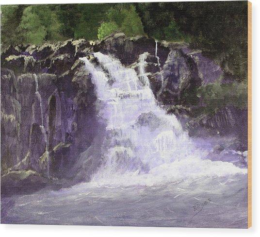 Abram's Falls Wood Print by Barry Jones