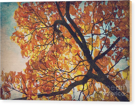 Abstract Autumn Impression Wood Print by Angela Doelling AD DESIGN Photo and PhotoArt