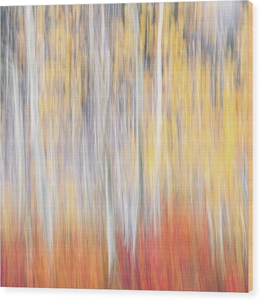 Abstract Autumn Wood Print