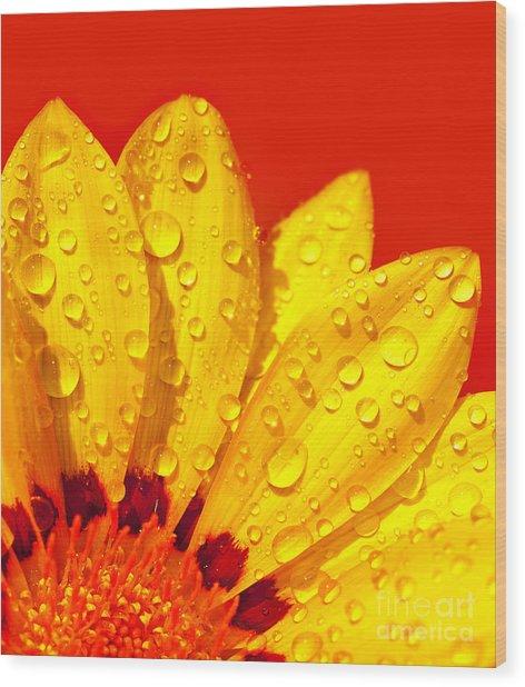 Abstract Flower Petals Wood Print