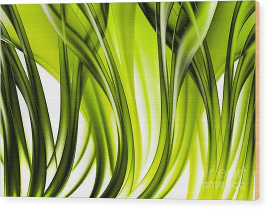 Abstract Green Grass Look Wood Print