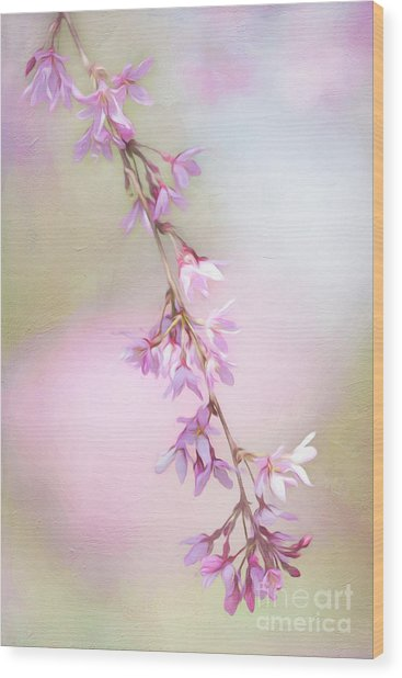 Abstract Higan Chery Blossom Branch Wood Print