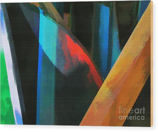 Abstract No. Twenty Four Wood Print by Tom Griffithe