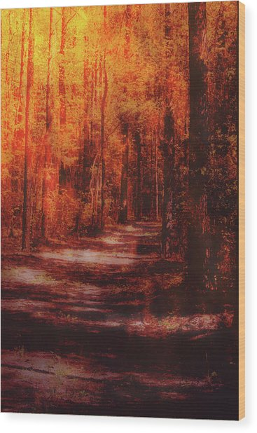 Abstract Path Wood Print
