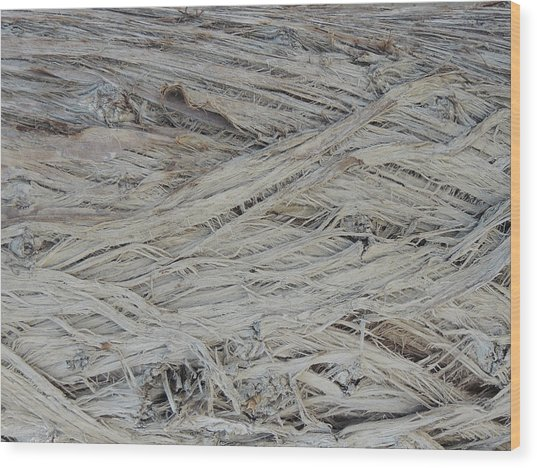 Abstract Tree Bark Wood Print