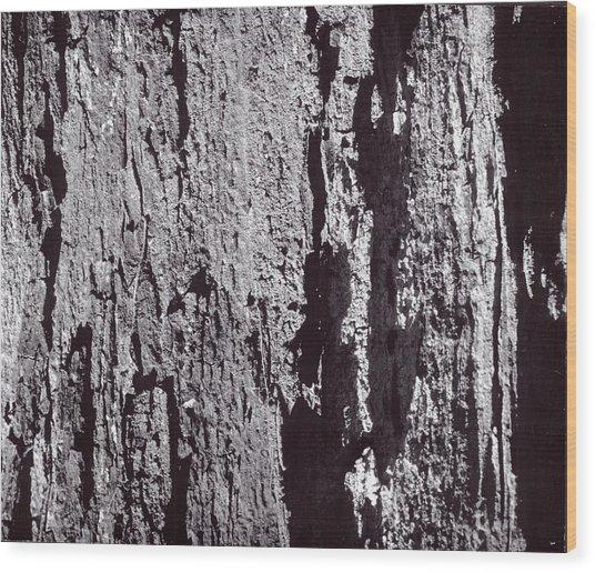 Abstract Treebark Wood Print