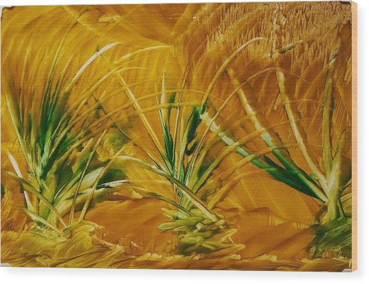 Abstract Yellow, Green Fields   Wood Print