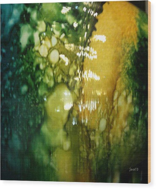 Abstraction And Brain  Wood Print by Fania Simon