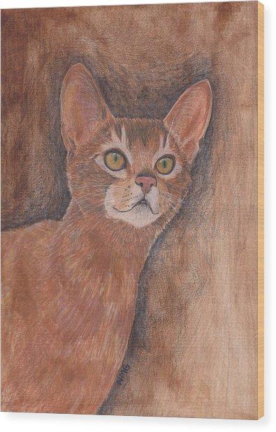 Abyssinian Cat Wood Print by Nicole Grattan