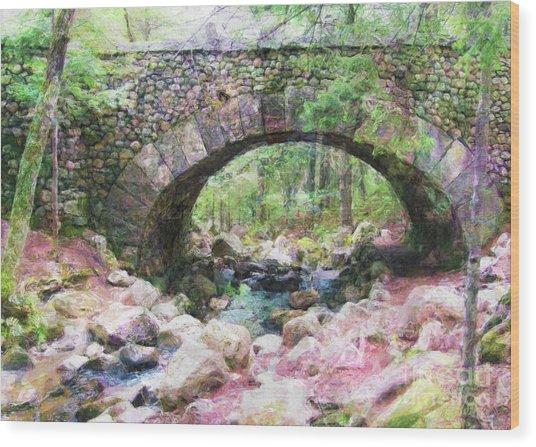 Acadia National Park - Cobblestone Bridge Abstract Wood Print