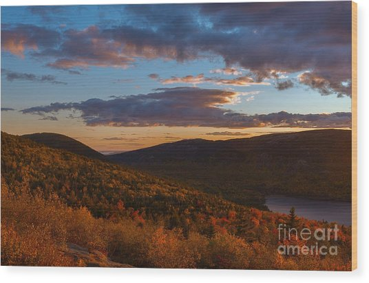 Acadia Sunset Wood Print