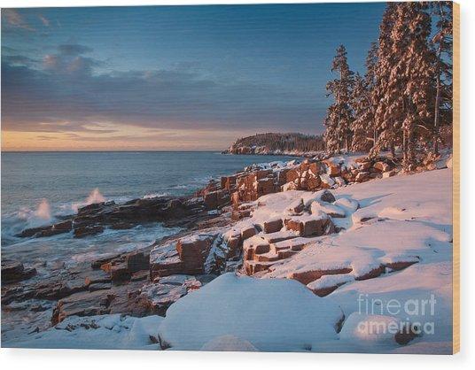 Acadian Winter Wood Print