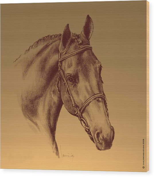 Achilles Wood Print by Laurie Musser