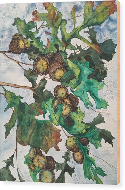 Acorns On An Oak  Wood Print