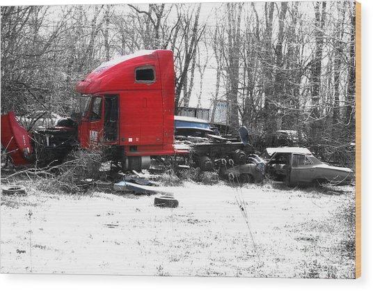 Across The Road - Rural America  Wood Print by Steven Digman