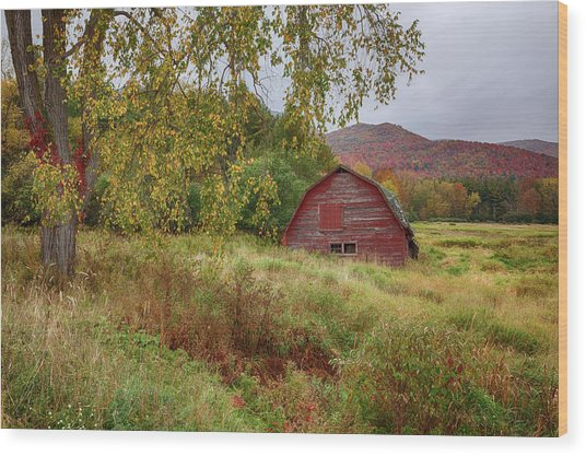 Adirondack Barn In Autumn Wood Print