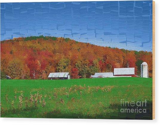 Adirondack Rural Wood Print by Diane E Berry