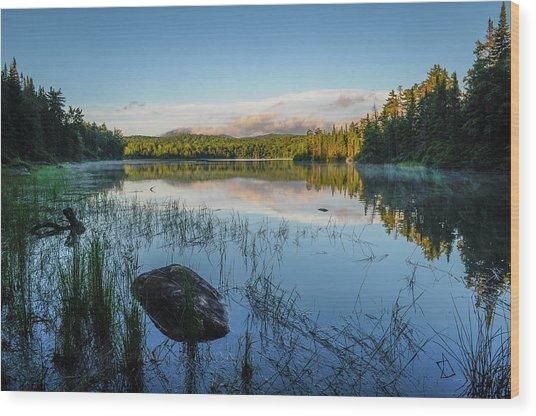 Adirondack Wild Wood Print