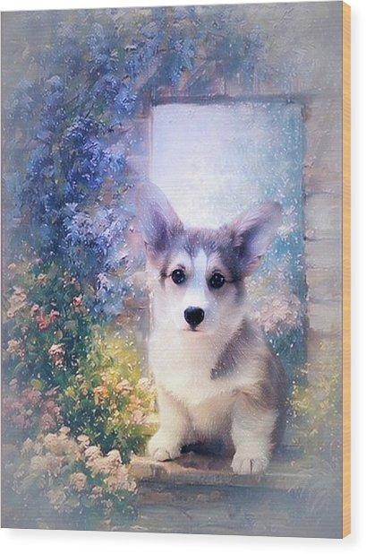 Adorable Corgi Puppy Wood Print