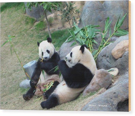 Adorable Pandas Wood Print by Ming Yeung