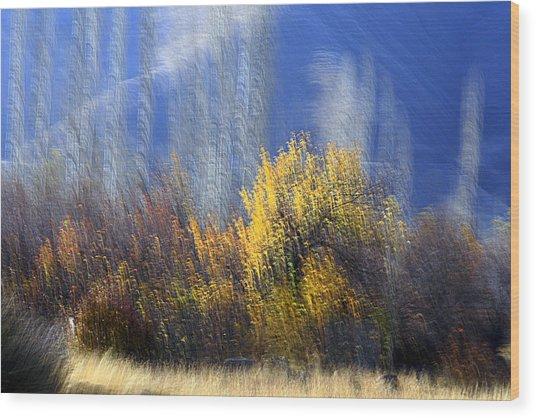Adour Wood Print by Robert Shahbazi