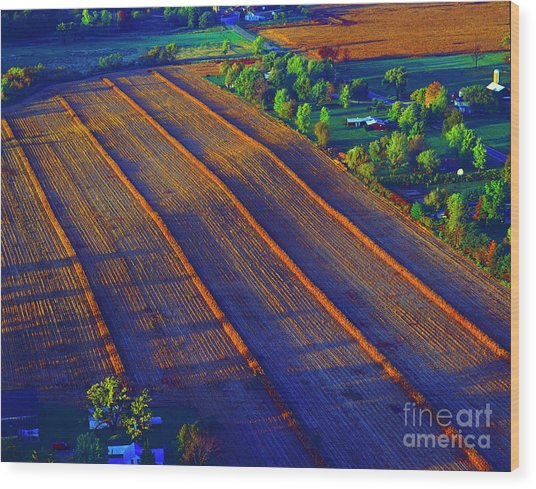Aerial Farm Field Harvested At Sunset Wood Print